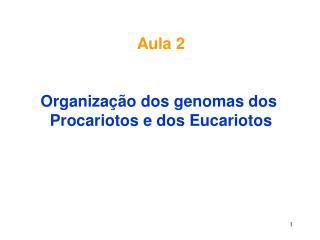 Aula 2   Organiza  o dos genomas dos  Procariotos e dos Eucariotos