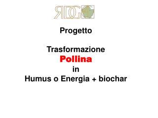 Progetto  Trasformazione  Pollina in  Humus o Energia  biochar