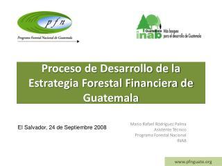Proceso de Desarrollo de la Estrategia Forestal Financiera de Guatemala