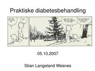 Praktiske diabetesbehandling