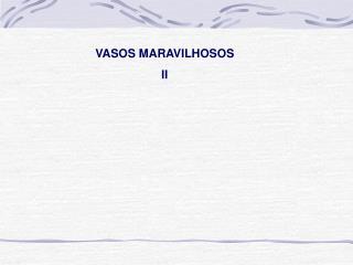 VASOS MARAVILHOSOS II