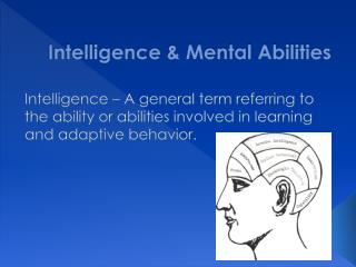 Intelligence  Mental Abilities