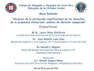 Mesa Redonda   Alcances de la protecci n constitucional de los derechos de la propiedad intelectual, an lisis de derecho