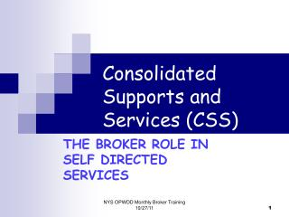 Consolidated Supports and Services CSS