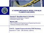Daniela P. Boso, Bernhard A. Schrefler  Dipartimento di Costruzioni e Trasporti Universit  di Padova, Italia Marek Lefik