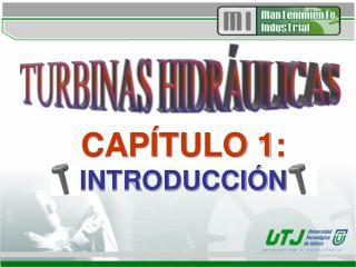 CAP TULO 1:  INTRODUCCI N