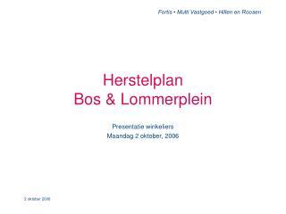 Herstelplan  Bos  Lommerplein