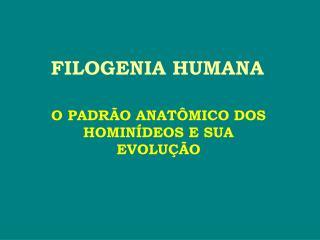 FILOGENIA HUMANA