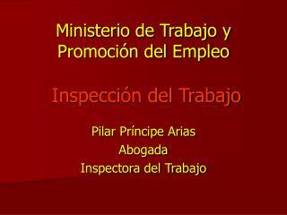 Ministerio de Trabajo y Promoci n del Empleo    Inspecci n del Trabajo
