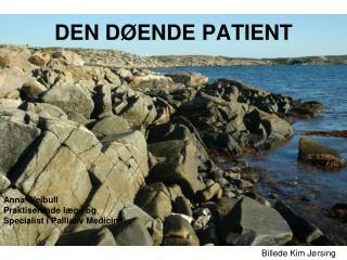 DEN D ENDE PATIENT