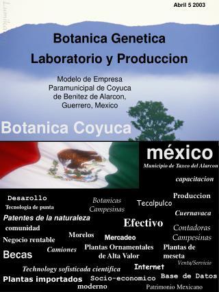 Modelo de Empresa Paramunicipal de Coyuca    de Benitez de Alarcon, Guerrero, Mexico