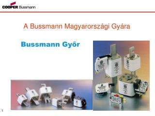 A Bussmann Magyarorsz gi Gy ra