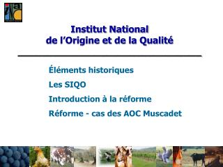 Institut National  de l Origine et de la Qualit  _______________________________