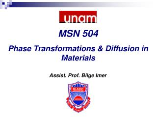 Assist. Prof. Bilge Imer