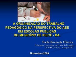 A ORGANIZA  O DO TRABALHO             PEDAG GICO NA PERSPECTIVA DO AEE  EM ESCOLAS P BLICAS DO MUNIC PIO DE IREC  - BA.