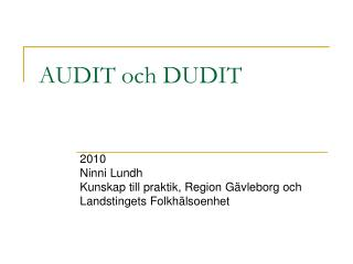 AUDIT och DUDIT