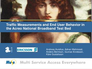Traffic Measurements and End User Behavior in the Acreo National Broadband Test Bed