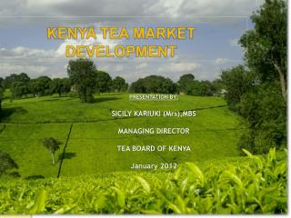 PRESENTATION BY:  SICILY KARIUKI Mrs,MBS   MANAGING DIRECTOR   TEA BOARD OF KENYA  January 2012