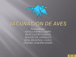 VACUNACION DE AVES
