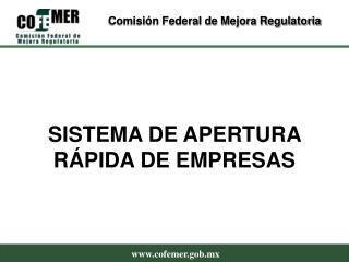 SISTEMA DE APERTURA R PIDA DE EMPRESAS