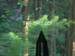 THE THS CCF
