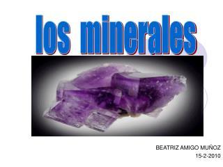 BEATRIZ AMIGO MU OZ 15-2-2010