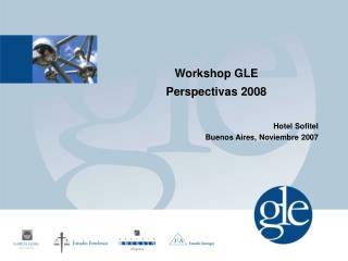 Workshop GLE Perspectivas 2008