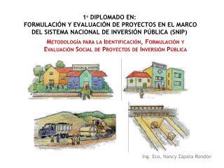 1  DIPLOMADO EN:  FORMULACI N Y EVALUACI N DE PROYECTOS EN EL MARCO DEL SISTEMA NACIONAL DE INVERSI N P BLICA SNIP