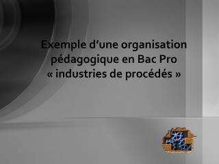 Exemple d une organisation p dagogique en Bac Pro   industries de proc d s