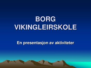 BORG VIKINGLEIRSKOLE