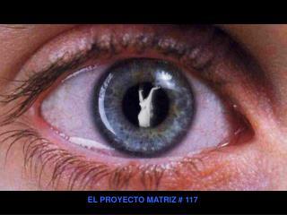 EL PROYECTO MATRIZ  117