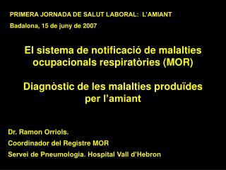 El sistema de notificaci  de malalties ocupacionals respirat ries MOR  Diagn stic de les malalties produ des per l amian