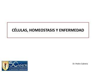C LULAS, HOMEOSTASIS Y ENFERMEDAD