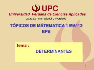 Tema :                DETERMINANTES