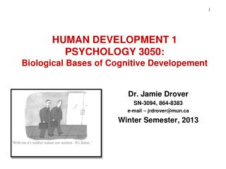 HUMAN DEVELOPMENT 1 PSYCHOLOGY 3050: Biological Bases of Cognitive Developement