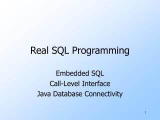 Real SQL Programming