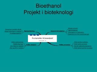 Bioethanol Projekt i bioteknologi