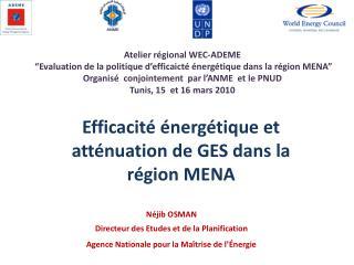 N jib OSMAN Directeur des Etudes et de la Planification Agence Nationale pour la Ma trise de l  nergie