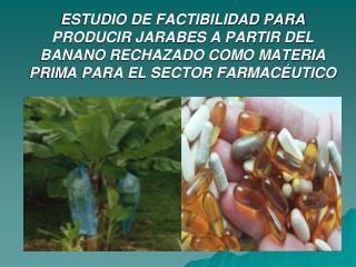 ESTUDIO DE FACTIBILIDAD PARA PRODUCIR JARABES A PARTIR DEL BANANO RECHAZADO COMO MATERIA PRIMA PARA EL SECTOR FARMAC UTI