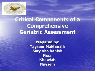 Critical Components of a Comprehensive Geriatric Assessment