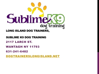 Long Island Dog Trainers, Sublime K-9 Dog Training
