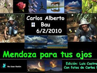 Carlos Alberto Bau    6