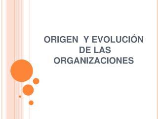 ORIGEN  Y EVOLUCI N  DE LAS ORGANIZACIONES