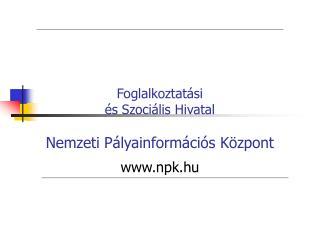 Foglalkoztat si   s Szoci lis Hivatal  Nemzeti P lyainform ci s K zpont