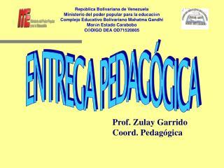 ENTREGA PEDAG GICA