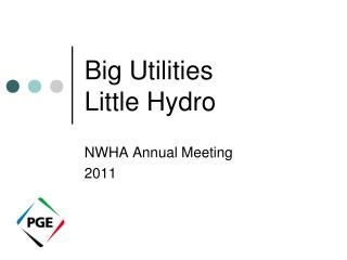Big Utilities Little Hydro