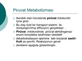 Piruvat Metabolizmasi