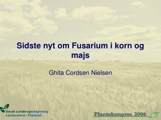 Sidste nyt om Fusarium i korn og majs