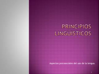 Principios ling  sticos