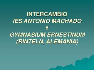 INTERCAMBIO  IES ANTONIO MACHADO  Y GYMNASIUM ERNESTINUM RINTELN, ALEMANIA